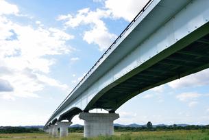 フェニックス大橋を見上げるの写真素材 [FYI02656133]