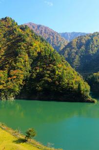 秋の加治川治水ダム公園の写真素材 [FYI02656144]