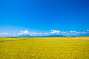 秋の田園風景と山並みの写真素材 [FYI02656162]