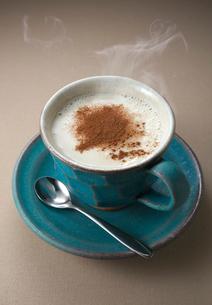 温かい豆乳にシナモンパウダーの写真素材 [FYI02656256]