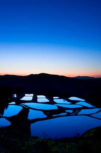 山古志の棚田の朝景の写真素材 [FYI02656509]