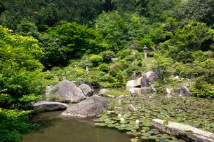 西福寺書院庭園の写真素材 [FYI02656707]