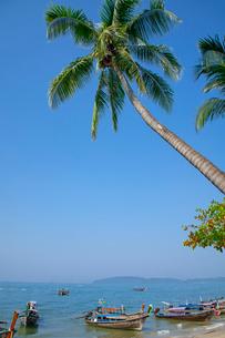 アオナンビーチの写真素材 [FYI02657005]