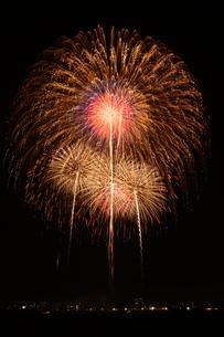 とりで利根川花火大会の打上花火の写真素材 [FYI02657116]