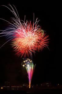 鹿沼さつき祭り協賛花火大会のスターマインの写真素材 [FYI02657346]