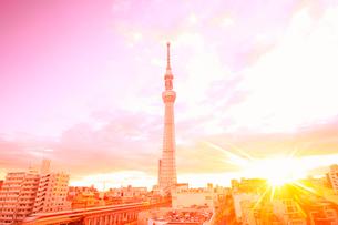 朝日と東京スカイツリーと東武鉄道のハイキーイメージの写真素材 [FYI02657421]