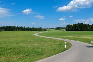 田園風景と道の写真素材 [FYI02657465]