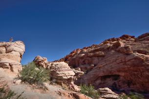 地層と色々な色の岩山が並ぶレットロックキャニオン国立保護区の写真素材 [FYI02657490]