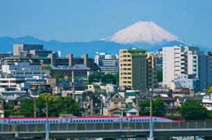 富士山と東京を走る秋田新幹線E6系スーパーこまちの写真素材 [FYI02657558]
