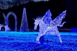 るり渓温泉,京都イルミエ-ル,天空の森の写真素材 [FYI02657679]