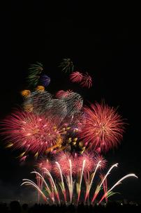 とりで利根川大花火のエンディング音楽花火の写真素材 [FYI02657769]
