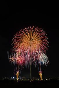 とりで利根川大花火のフィナーレ盛夏のにぎわいの写真素材 [FYI02657806]