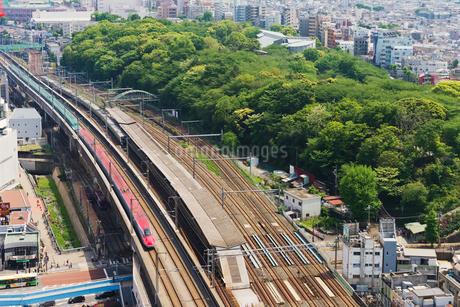 東京を走る秋田新幹線E6系こまちと東北新幹線E5系はやぶさの写真素材 [FYI02657863]