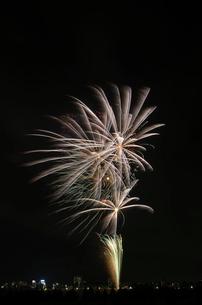 とりで利根川大花火 百花繚乱 Loveland,lslandの写真素材 [FYI02657908]