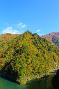 秋の加治川治水ダム周辺の写真素材 [FYI02657957]