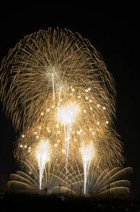 いせはら芸術花火大会 グランドフィナーレ メロディー花火の写真素材 [FYI02658140]