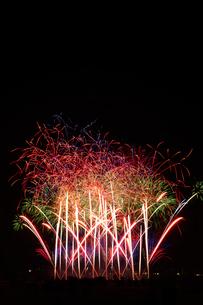 とりで利根川花火大会のワイドスターマインの写真素材 [FYI02658142]