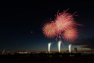葛飾納涼花火大会で富士山暮色と東京スカイツリーの写真素材 [FYI02658155]