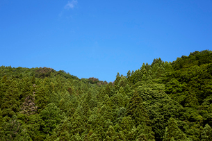 生駒山系の山と青空の写真素材 [FYI02658180]