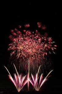 常総きぬ川花火大会 花火の巨匠 さくら~愛しき人へ~の写真素材 [FYI02658186]