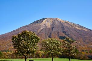 桝水高原より望む大山の写真素材 [FYI02658253]