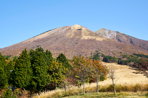 桝水原より望む大山の写真素材 [FYI02658266]