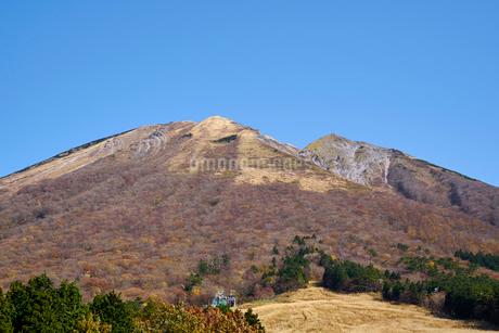 桝水原より望む大山の写真素材 [FYI02658291]