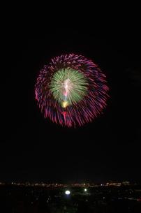 長岡まつり大花火大会の匠の花火で昇曲導付三重芯変化菊の写真素材 [FYI02658319]