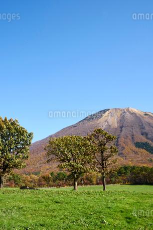 桝水高原より望む大山の写真素材 [FYI02658415]