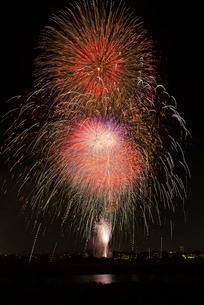 世田谷区たまがわ花火大会天華光彩~超大型スターマイン~の写真素材 [FYI02658420]