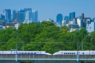 東京を走る東北新幹線E2系はやて型と秋田新幹線E3系こまちの写真素材 [FYI02658532]