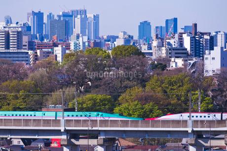 東京を走る東北新幹線はやぶさと秋田新幹線こまちと新宿高層ビル群の写真素材 [FYI02658545]
