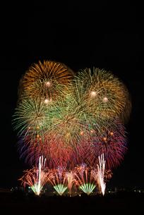とりで利根川大花火のエンディング音楽花火の写真素材 [FYI02658594]