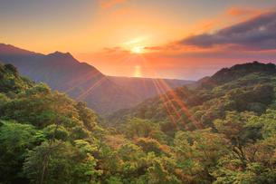 新緑の原生林と明星岳と朝日と安房方向の海の写真素材 [FYI02658605]
