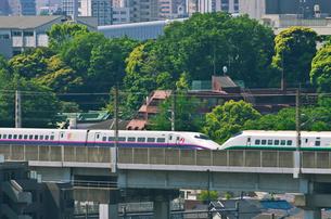 東京を走る東北新幹線E2系はやて型と山形新幹線E3系つばさの写真素材 [FYI02658647]
