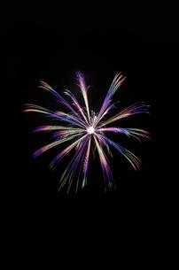 くずうフェスタ花火大会の芯入虹八方咲の写真素材 [FYI02658696]