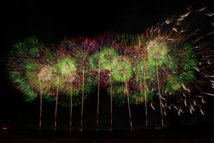 こうのす花火大会のワイドスターマインで黄金錦大乱舞の写真素材 [FYI02658707]