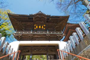 関東三弁天の一つ 布施弁天 紅龍山東海寺の楼門の写真素材 [FYI02658882]