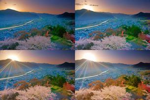 桜咲く荒砥城跡から望む千曲川上流方向と朝日,定点撮影の写真素材 [FYI02658925]