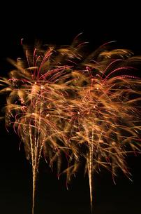 常総きぬ川花火大会の花火GALLERY100連発の写真素材 [FYI02658986]