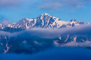 朝の白馬連峰の写真素材 [FYI02659012]