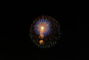 いばらきまつり花火で10号玉の昇小花付五重芯冠菊先緑点滅の写真素材 [FYI02659015]