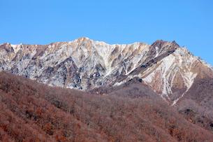 奥大山スキー場より望む大山の写真素材 [FYI02659082]