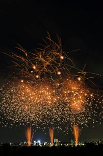 とりで利根川大花火 百花繚乱 ジャポニズム 和火音楽の写真素材 [FYI02659119]