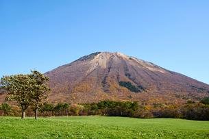 桝水高原より望む大山の写真素材 [FYI02659123]