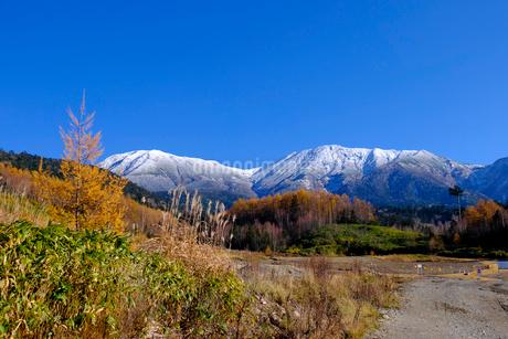 紅葉の御嶽山の写真素材 [FYI02659185]