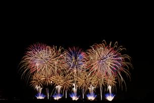 こうのす花火大会の音と光の合同スターマイン②「艶やか」の写真素材 [FYI02659291]