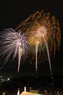 常総きぬ川花火大会 エンディング花火と八重芯錦冠菊の写真素材 [FYI02659311]