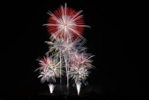 いせはら芸術花火大会 グランドフィナーレ メロディー花火の写真素材 [FYI02659333]