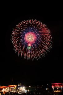 土浦全国花火競技大会で昇り雄花四重芯変化菊の写真素材 [FYI02659409]